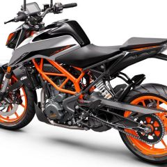 KTM_390_DUKE_-_rear_left_gray